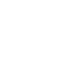 The Toronto Sketch Comedy Festival Inc.